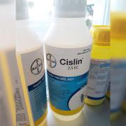 Sản phẩm diệt mối mọt Siclin 2.5 EC